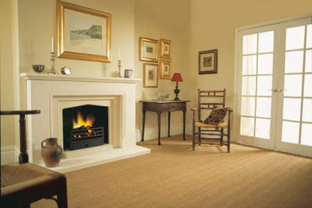 warwick-small-size-fireplace